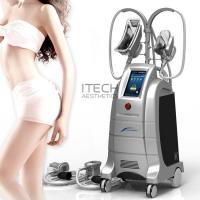 Quality Body Slimming And Shaping Cryolipolysis 2 Handles Fat Freezing Machine Weight Losing Slimming Machine for sale