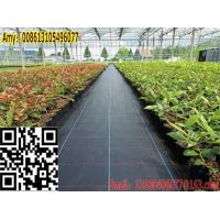 Quality High quality for green house woven weed control cover fabric/weed barrier for sale