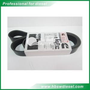 Quality QSM11 engine Belt V Ribbed 8PK1628 3103697 for sale