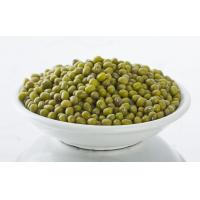 Quality 2014 new season green gram with the competitive price for export for sale