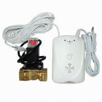 Quality Gas Alarm With Solenoid Valve (AK-202V With DN20 Solenoid Valve) for sale