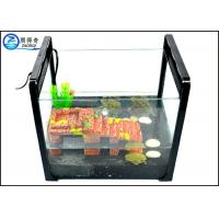 Quality Aquarium Portable Fish Tank , Black White Reptile Ultra Clear Glass Tank for sale
