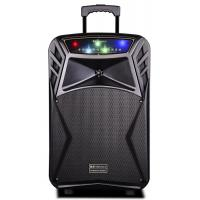 Quality 45 Watt Outdoor Rechargeable Battery Trolley Speaker System With Led Lights for sale