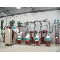 Quality 24tom Small Scale Corn Processing Machine for sale