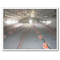 Quality Broiler Feeding System for sale