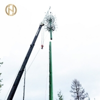 Quality 30M Q235 Telecommunication Post For Antenna Equipment for sale