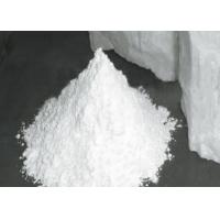 Quality Talc Powder Coating Additives CAS No. 14807 96 6 For Cosmestic Body Powder for sale