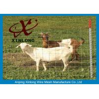 Quality Corrosion Resistance Welded Wire Livestock Panels With ISO9001 / 2008 Certificate for sale
