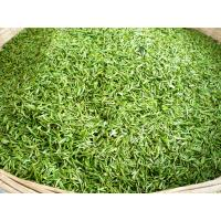 Quality Morocco Green Tea Supplier with Quality China Green Tea 41022A for sale