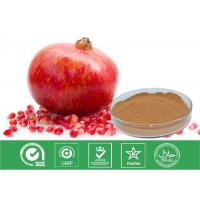 Quality Cosmetic Grade Natural Punica Granatum Extract Anti Oxidant / Descenting Blood Pressure for sale