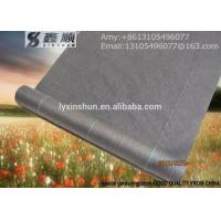Quality consolidation project anti UV PP woven silt fence /ground cover landscaping mats for sale