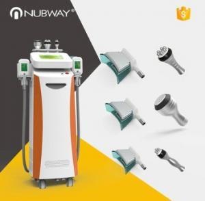 China Professional NBW-C325 cool technology body slimming weight loss cryolipolysis machine on sale