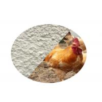 Quality Water Soluble Pharmaceutical Raw Materials , Tilmicosin 20% For Feed Additives for sale