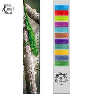 Quality High Definition Motion 3D Lenticular Ruler Animal Design For Students for sale