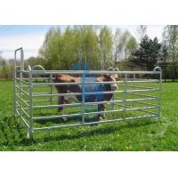 Quality Galvanised Portable Livestock Fence Panels , Steel Tube  Horse Fence Panels For Dairy Farm for sale