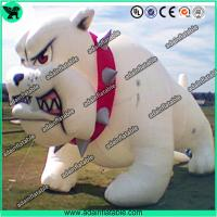 Quality Event Inflatable Dog, Party Inflatable Dog,Event Inflatable Dog Cartoon for sale