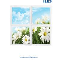 Quality LED Scenic Panels,Skyscape Series Designs,Ceiling panels,Nominal 2' x 4' panels for sale