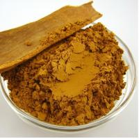 China Factory supply high quality natural Cinnamon Bark Extract 10%-30% Polyphenols on sale