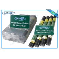Quality Biodegradable Non Woven Landscape Fabric Roll Packing for Garden Plant Protection for sale
