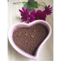 Quality Raw Natural Organic Cocoa Powder No Sugar High Grade For Baking Product for sale