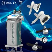 Quality Vacuum Cryolipolysis Slimming Machine / Fat Freeze with OEM & ODM Service for sale