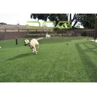 Quality Dog Friendly Artificial Grass For Pets Anti UV Excellent Water Permeability for sale
