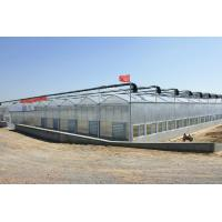 Stable Structure Galvanized Steel Greenhouse Single / Double Layer Available for sale
