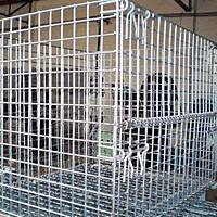 Quality Wire Mesh Containers for sale