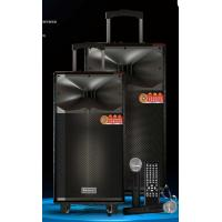 Quality Wireless Uhf Microphone Rechargeable PA Speaker System With Trolley And Wheels for sale