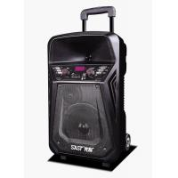 Buy Lithium Battery Rechargeable Trolley Speaker With Wireless Microphone / Bluetooth at wholesale prices