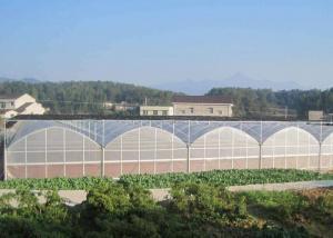 Quality Fruits Flower 8m Single Span PE Plastic Film Greenhouse for sale