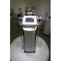 Quality 5 handles Fat Reduction Cryotherapy Body/Cryolipolysis Slimming Machine for sale