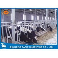 Buy Livestock Farm Locking Feed Barriers / Steel Galvanized Cattle Headlock Plan at wholesale prices