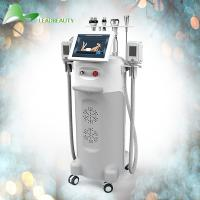 China Newest cryolipolysis fat reduction  advanced technology  work 12 hours No-downtime on sale