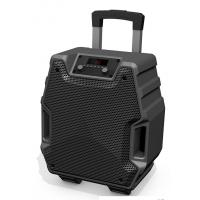 8 Inch Outdoor Black Color Portable  Plastic Body Speaker System With Bluetooth Function