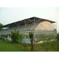 Vegetable Single Span Greenhouse , Gothic Arch Greenhouse Low Thermal Conductivity for sale
