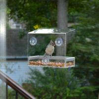 Quality Wholesale Large Window Bird Feeder - Free Detachable Tray Acrylic Plastic bird feeder with water drain holes for sale