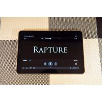 Quality Android 4.0 ICS 10 inch Capacitive Tablet PC Dual Core RK3066 CPU Support External 3G for sale