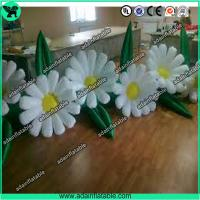 Quality Event Decoration Inflatable,Party Decoration Inflatable,Stage Decoration Inflatable for sale