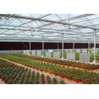 Quality UV Treated Multi Span Woven 200 Micron Reinforced Greenhouse for sale