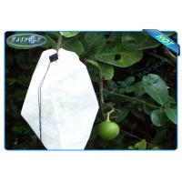 Quality Nonwoven Agiculture Plant Grow Bags For Fruit Growth and Protection , Potato Grow Bags for sale