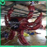 Quality Inflatable Crab,Inflatable Crab Cartoon,Inflatable Crab Costume for sale