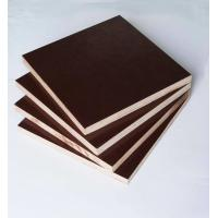 Quality Film Faced Poplar Plywood For Construction, High strength and reusded times for sale