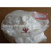 Quality 99% Purity White Raw Powder Testosterone Decanoate Test Decanoate For Injectable for sale