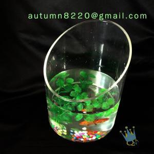 Quality Modern acrylic aquarium fish tank for sale