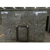Quality Precut Brazil Bianco Antico Granite Slab , Grey Bianco Antico Granite Tiles for sale