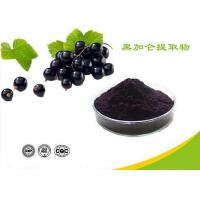 Quality Natural Water Soluble Freeze Dried Black Currant Extract Powder Anthocyanins for sale
