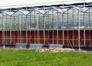 Quality Steel Vegetables Hydroponic Multi Span Glass Greenhouse for sale