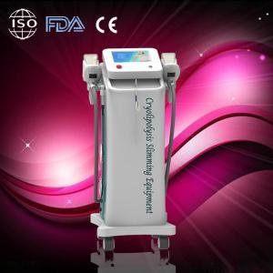 Quality Safe fat freeze zeltiq cryolipolysis slimming machine Vacuum System for sale