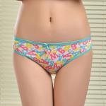 Quality 2015 New printed brief soft lady bikini stretch cotton women underwear lady boyshort lady for sale